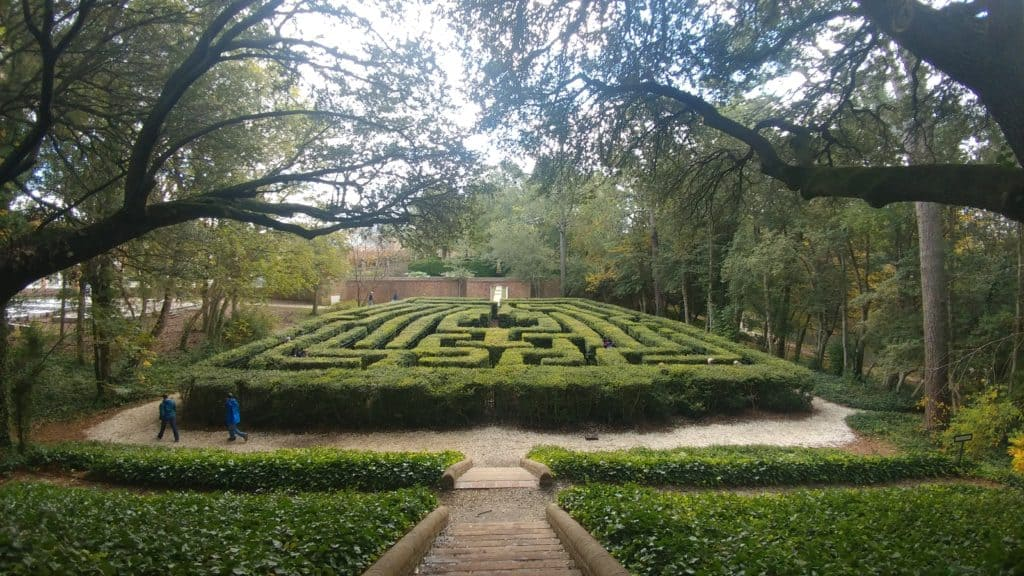 Colonial Williamsburg: The hedge maze behind the governor's palace