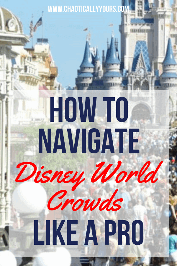 Disney World Crowds: How to manage them like a professional! #disney #disneyworld