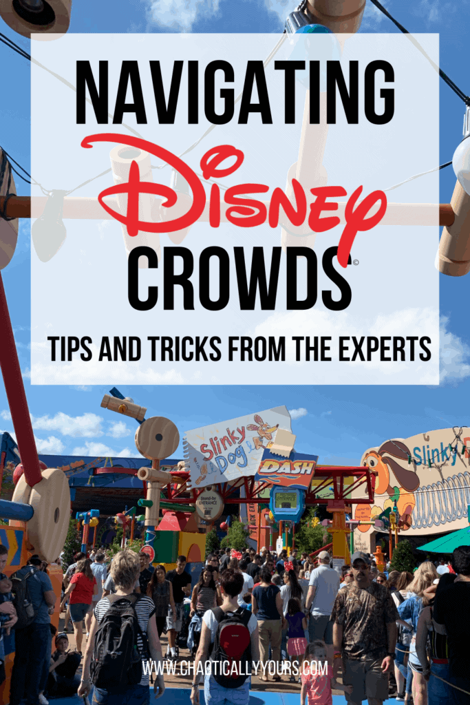 Navigating Disney Crowds: Tips and Tricks from the Experts