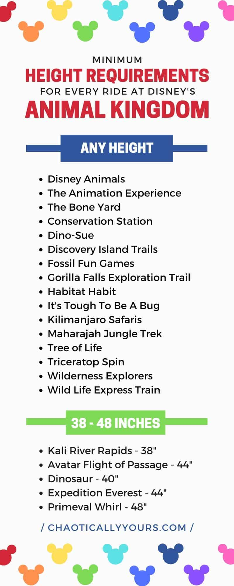 List of Disney World Height Requirements for Rides in the Animal Kingdom