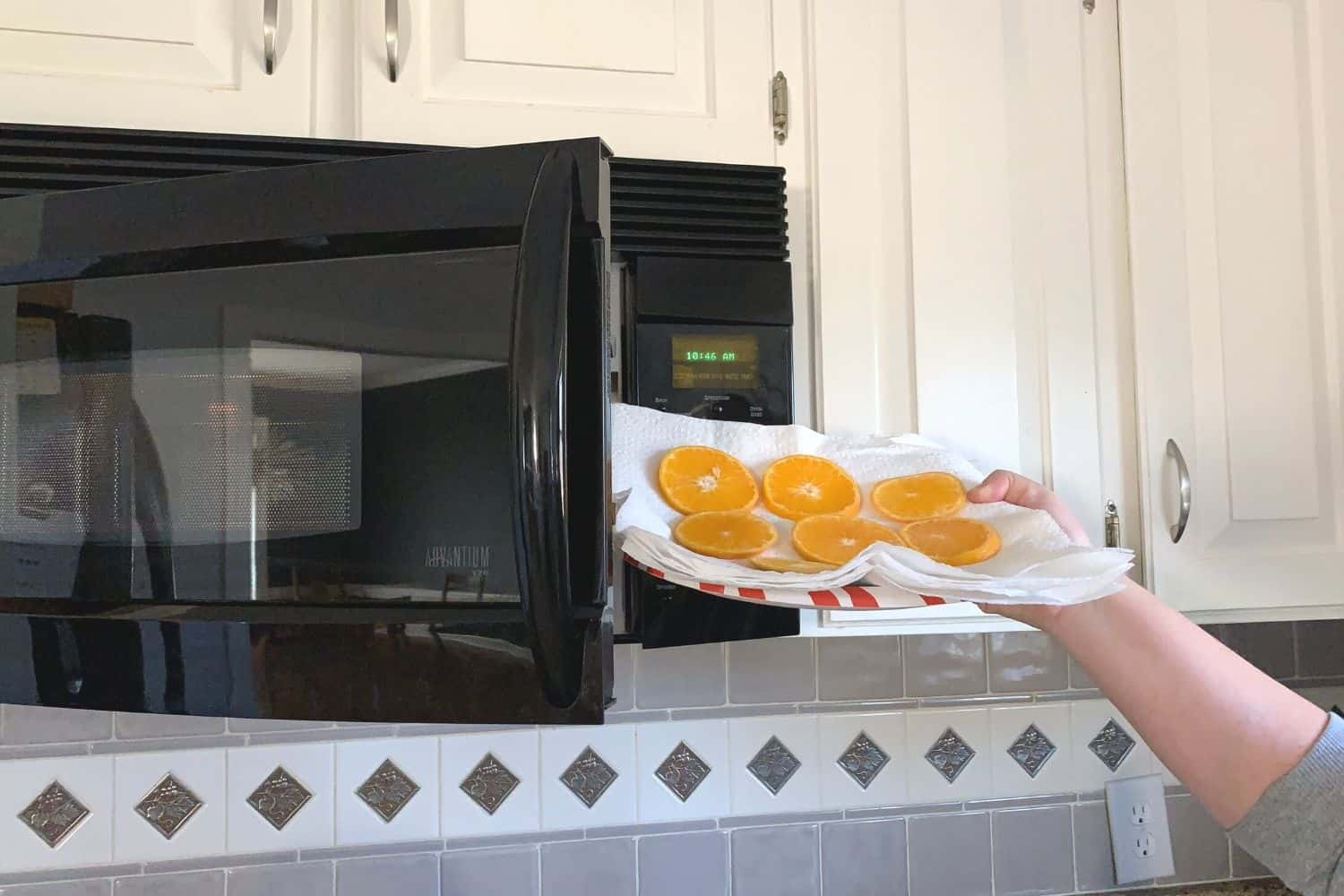 putting oranges slices in the microwave
