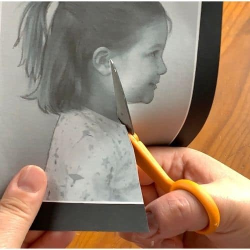 Cutting out the silhouette portrait