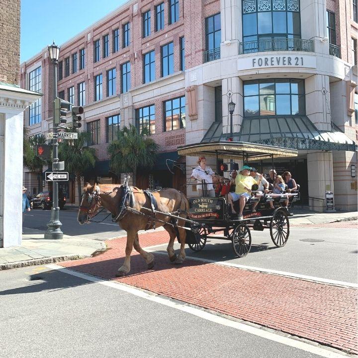 A carriage tour through Charleston, SC