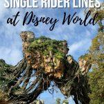 Single Rider LIne pin image